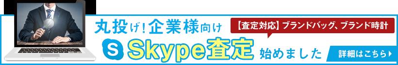 Skype(スカイプ)査定